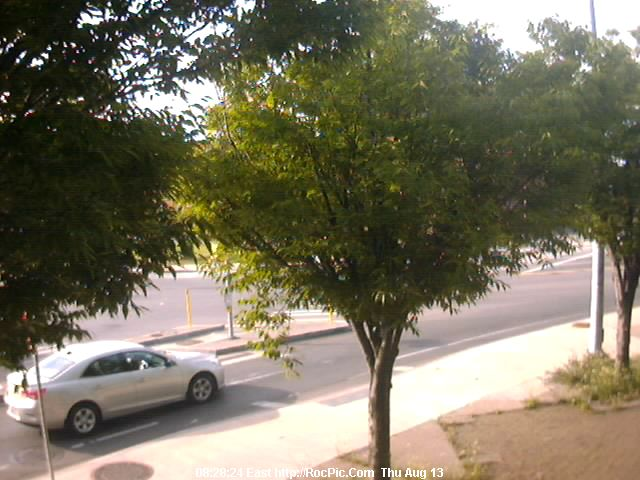 Rochester New York Photo, Main Street NEIGHBORHOOD! Live Cam. Near Downtown Rochester, NY Very Good Night Viewing. Auto Refresh  Each 15 Seconds RocPic.Com