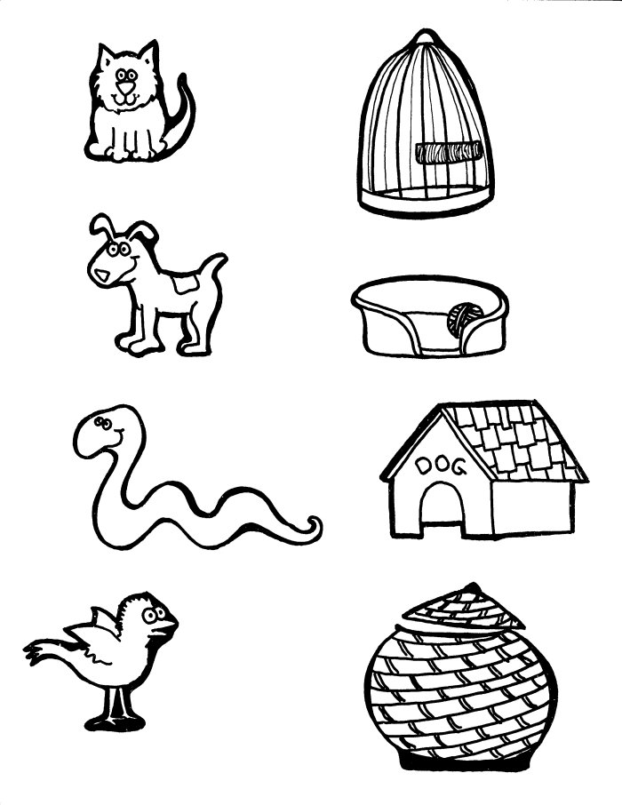 Animal matching coloring page