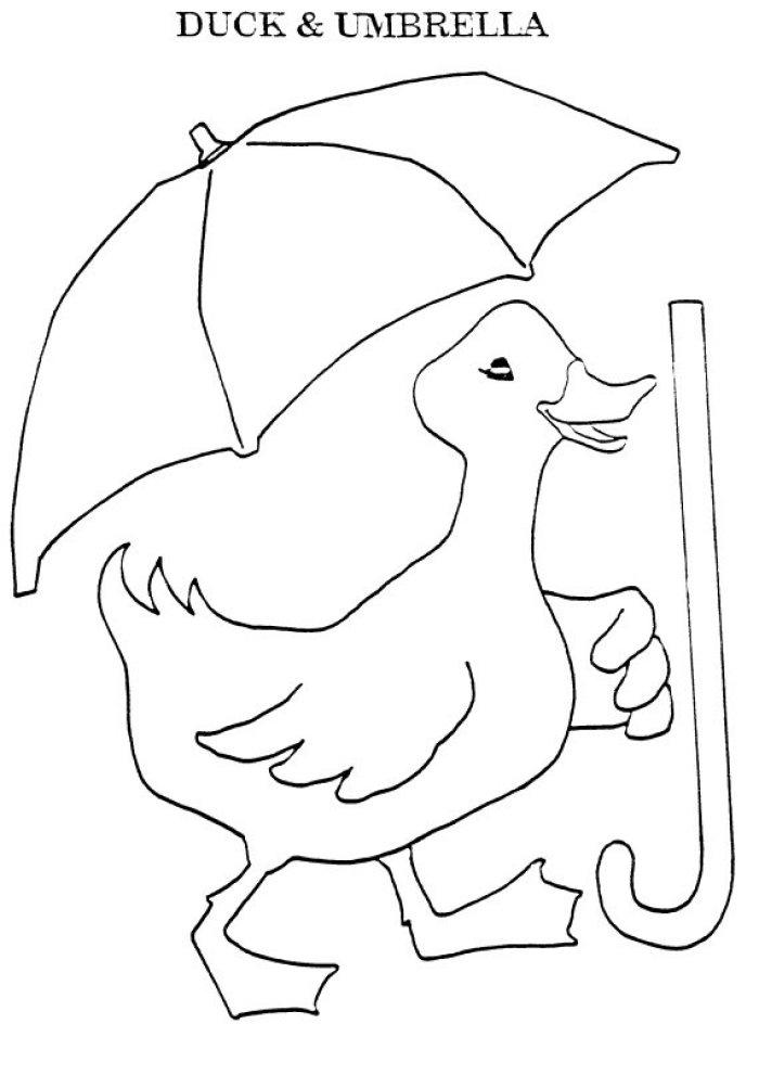 Umbrella cockatoo coloring page – Best Draws | 1003x700