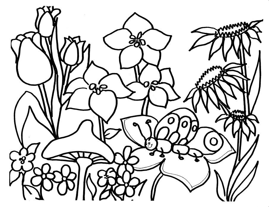 Coloring Pages Of Spring Flowers : Flowers Coloring Pages story words pics