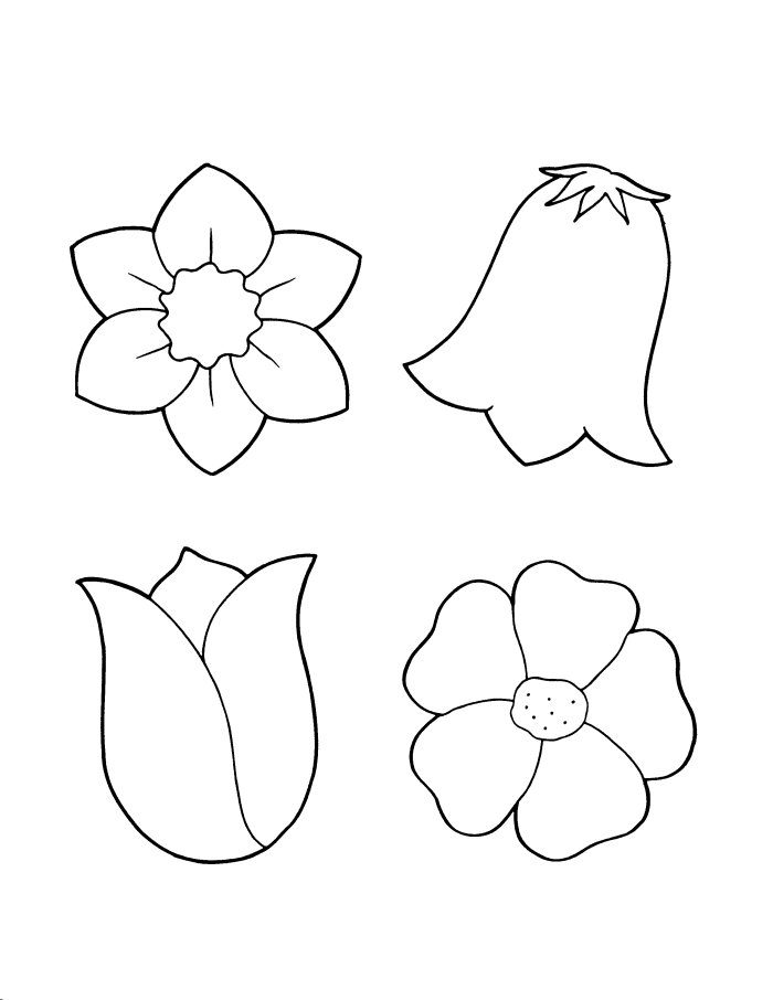 Coloring Pages Of Spring Flowers : Spring Flower Coloring Pages for Kids